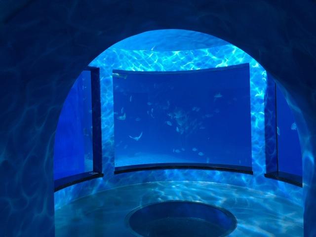 ウラジオストク水族館