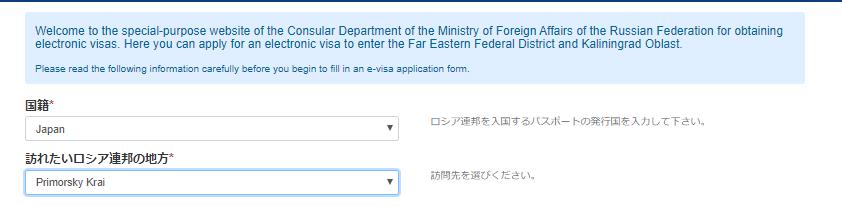 ウラジオストクe-visa申請画面