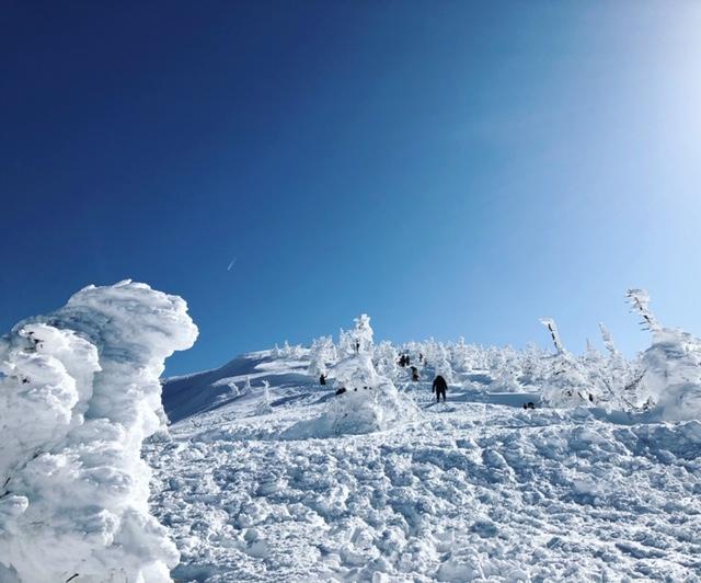 蔵王樹氷2
